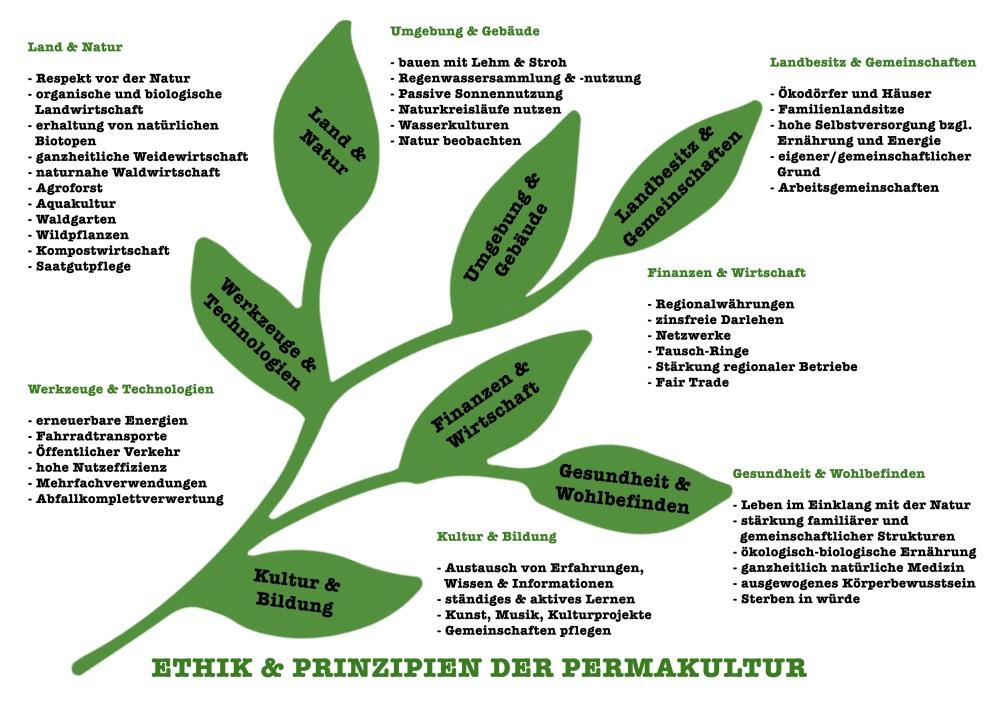 Leuoth_Perma_Ast
