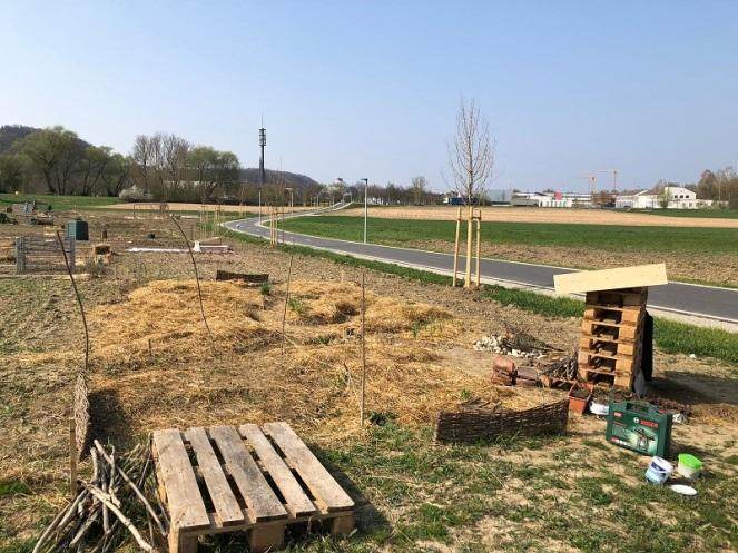 Flächenentwicklung (4)