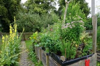 Hochbeet mit Gemüse und Kräuter 1