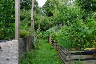 Hochbeet mit Gemüse und Kräuter 3